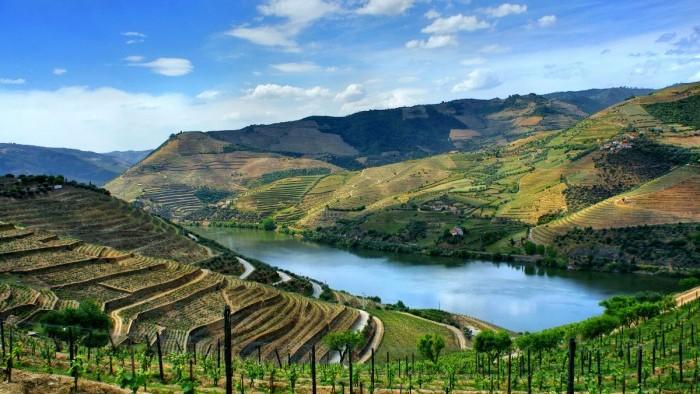 """Wine Tour - """"Douro Valley"""" - Dia Inteiro"""