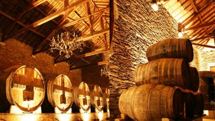 Dinner Tour in the most famous Douro Village