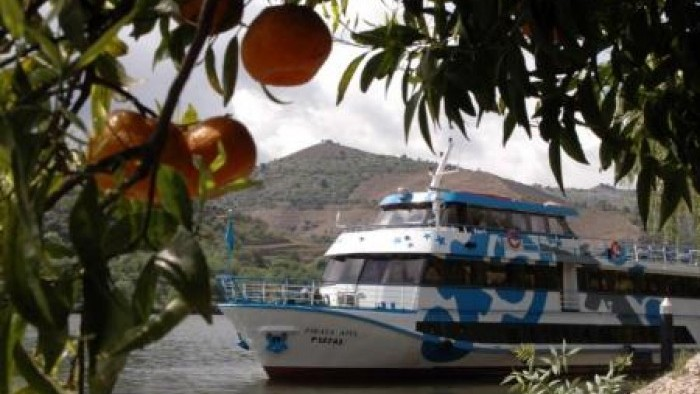 Cruise Porto Régua Porto (Upstream by boat and downstream by BUS)