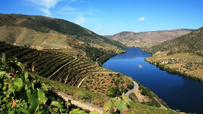 Douro Tour - Dia Inteiro