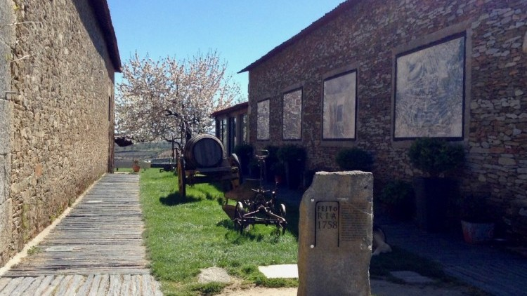 Special Tour at Quinta da Avessada