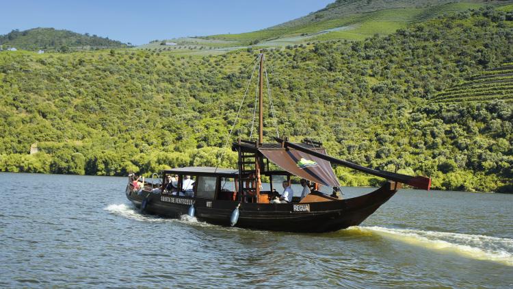 Cruise Pinhão Romaneira Pinhão